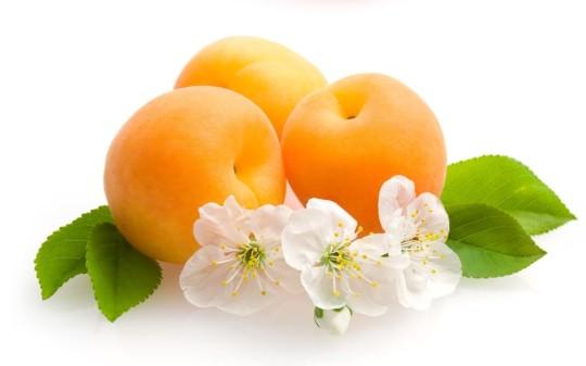 albaricoques-nogalfruits
