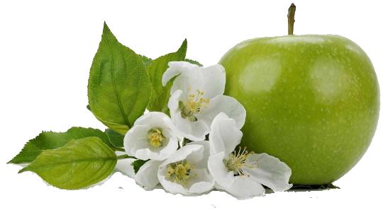 manzanas-nogalfruits