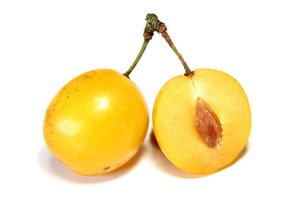 golden-plum